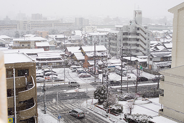名残の雪-3