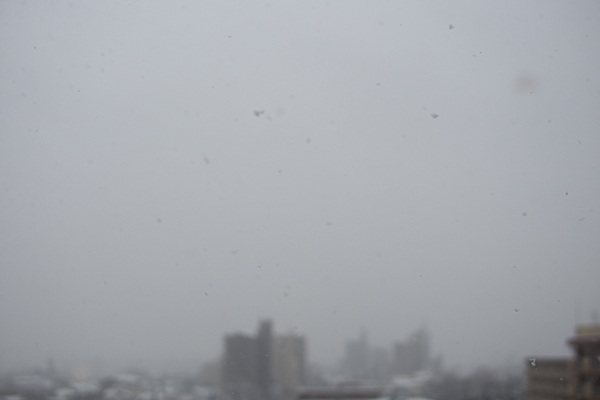 名残の雪-4