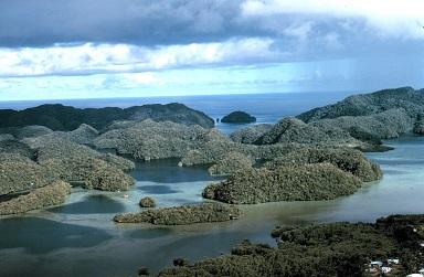 1280px-Aerial_view_limestone_islands_palau1971.jpg