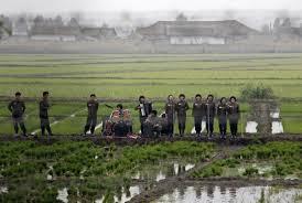 【比較】日本人と清国人と朝鮮人の農業の違い♥