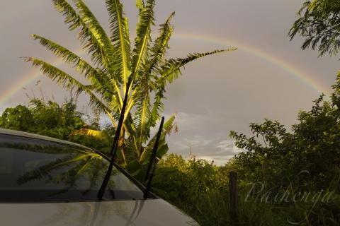 オヤジの虹