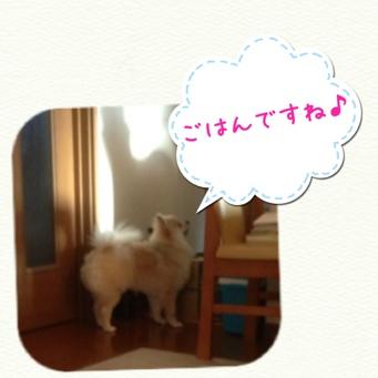fc2blog_201403252239595ca.jpg
