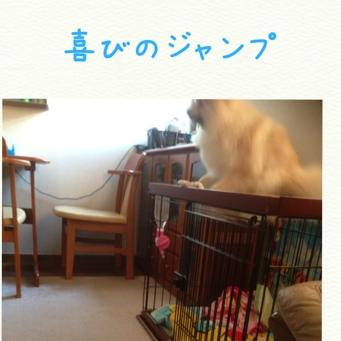 fc2blog_20140325224241bc7.jpg