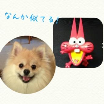 fc2blog_2014041820173043b.jpg