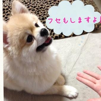 fc2blog_20140601232434e2f.jpg