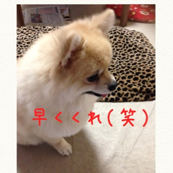 fc2blog_20140601232552614.jpg