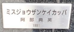 P1030638.jpg