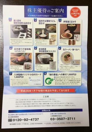 八洲電機_2013
