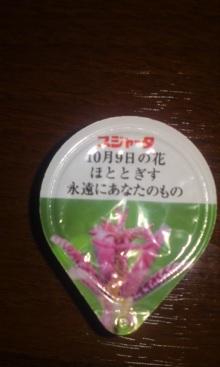 ソプラノ歌手♪佐藤智恵のオフィシャルブログ-101122_2311~01.jpg