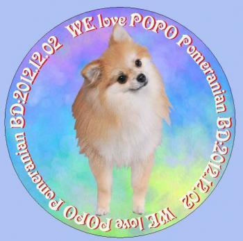 popo01_convert_20140602231537.jpg