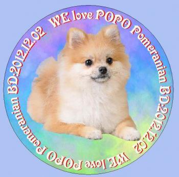 popo02_convert_20140602231440.jpg
