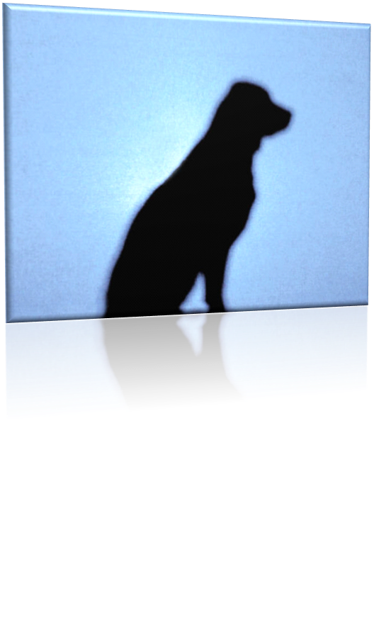dog_silhouette.png