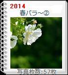 Harubara2.jpg