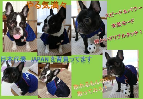 Japan_convert_20140518095933.jpg