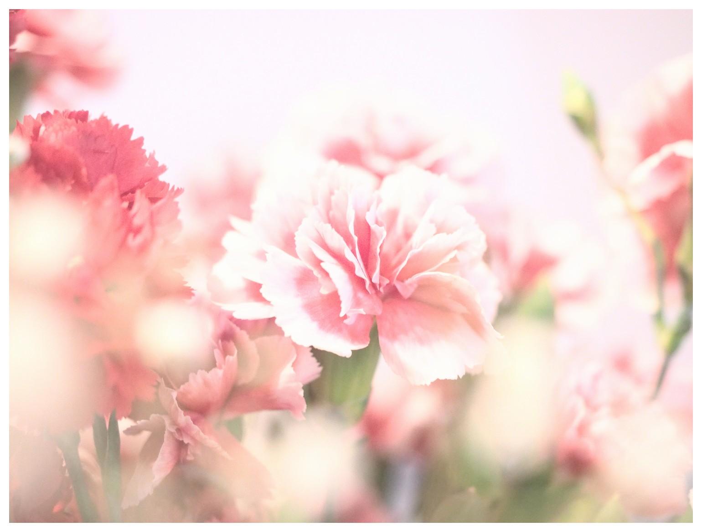 2014_05_16_01.jpg