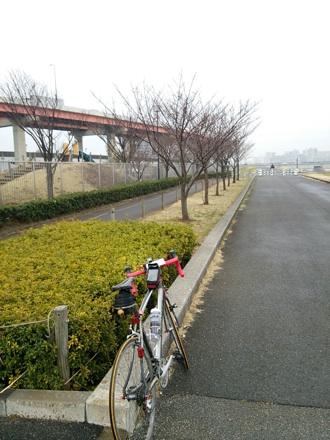 20140301_sikahama.jpg