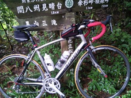 20140627_hanatatimatu.jpg