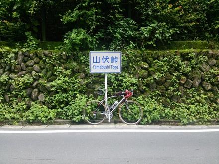 20140706_yamabusi2.jpg