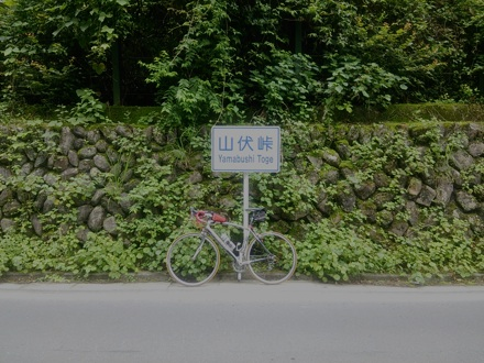 20140713_yamabusi.jpg